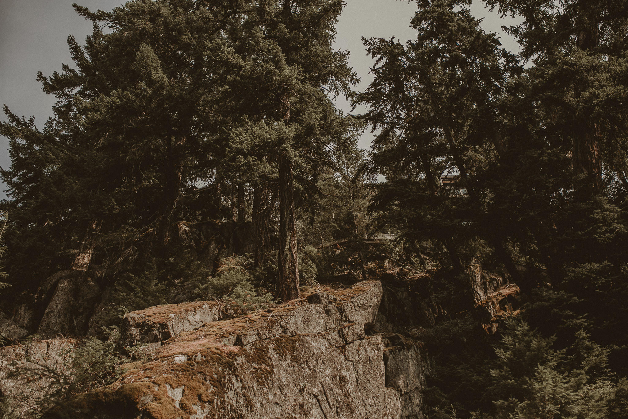Boho-Wedding-Whistler-Vancouver-080