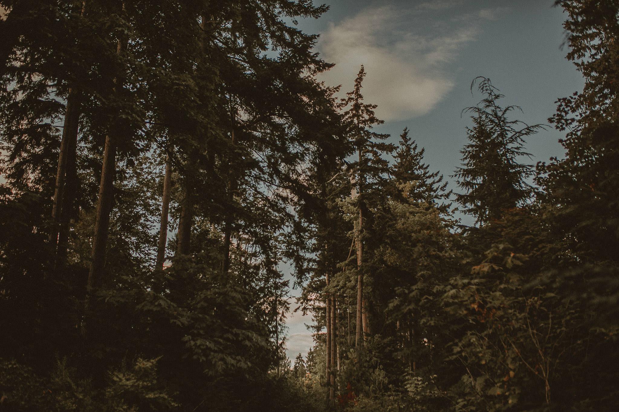 Boho-Wedding-Whistler-Vancouver-258