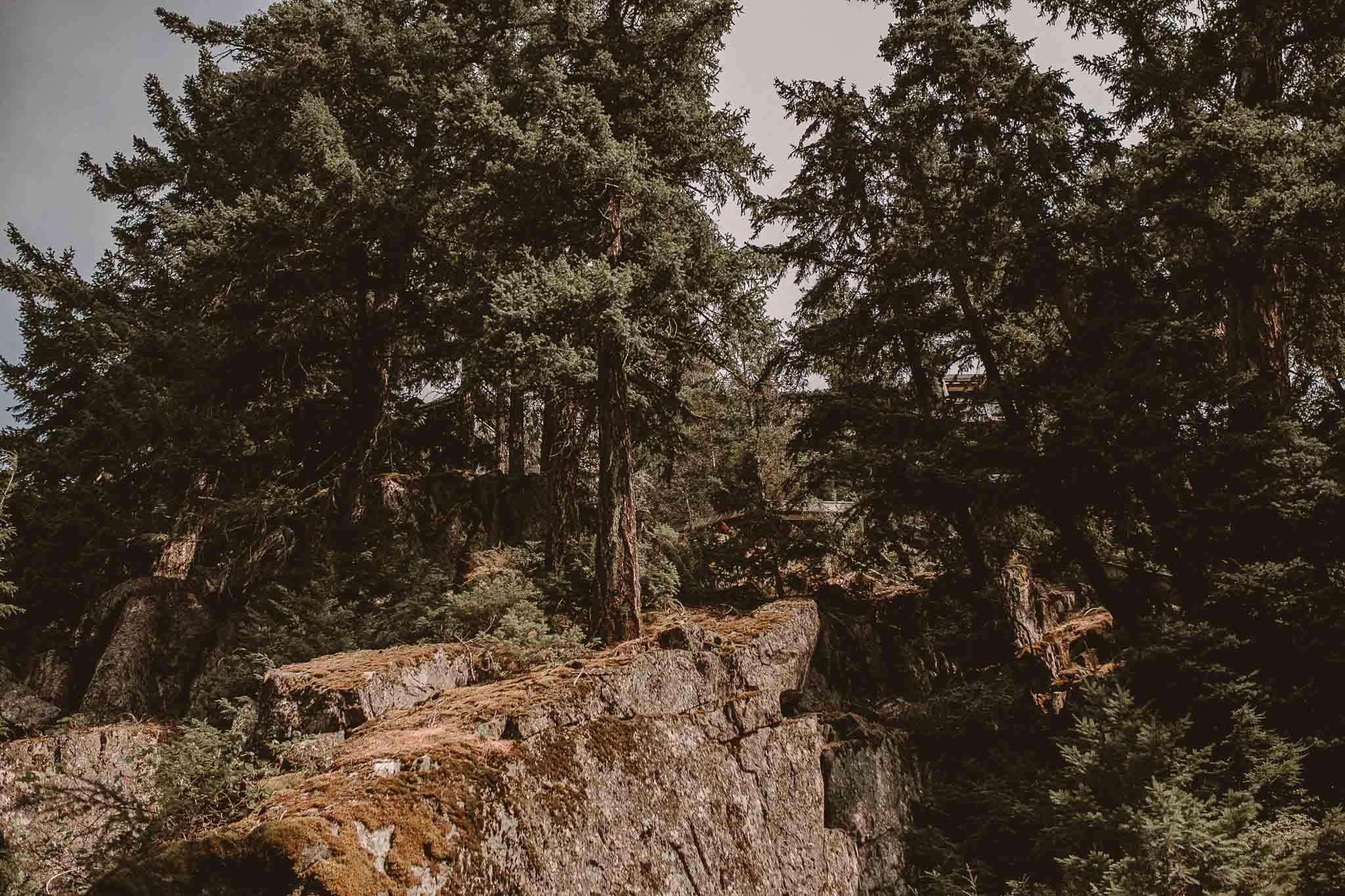 Whistler_Wedding_Photographer_0706